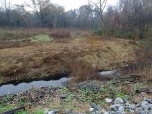 RG proctor creek 1