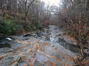 RG proctor creek 3