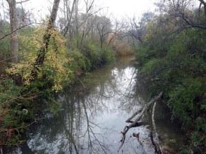 RG proctor creek 4